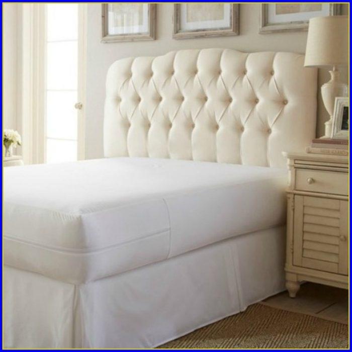 Bed Bug Mattress Protector California King