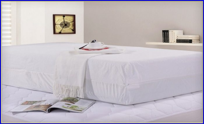 Bed Bug Mattress Protector Target