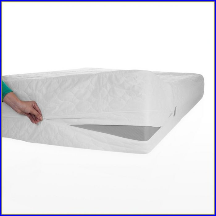 Bed Bug Mattress Protectors