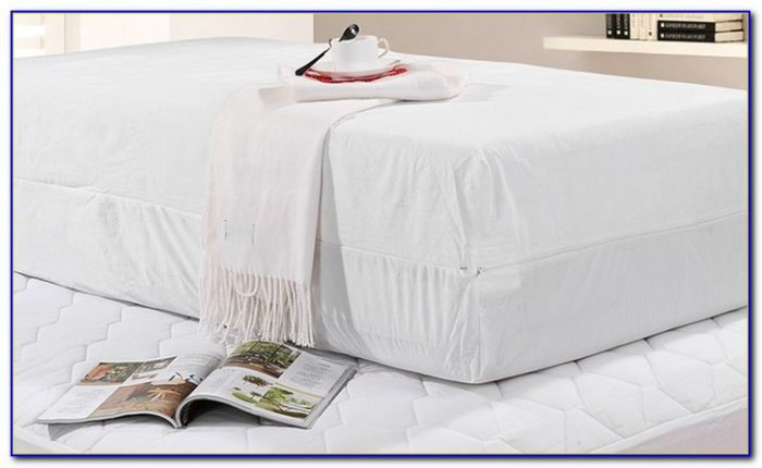 Bed Bug Mattress Protector King Size