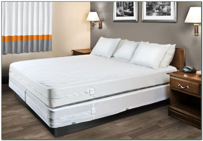 Bed Bug Mattress Protector Singapore