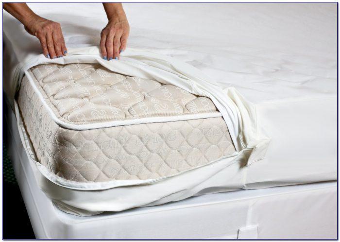 Bed Bug Mattress Protectors Amazon