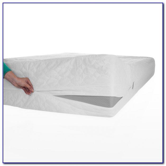Bed Bug Mattress Protectors Target