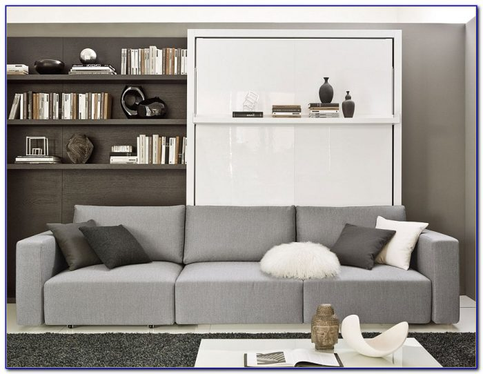 Murphy Bed Sofa Combination
