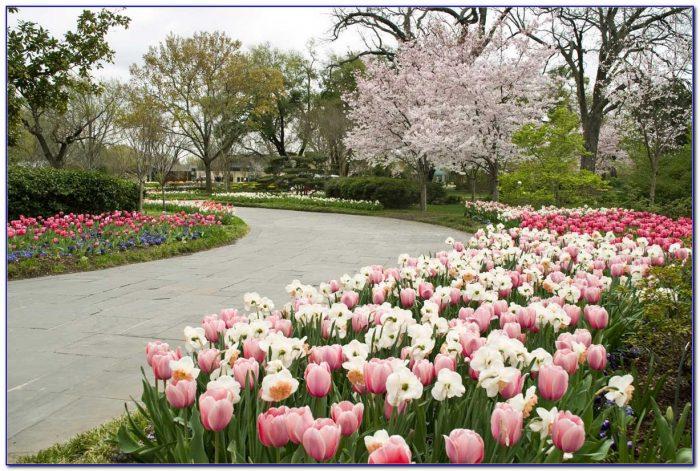 Fort Worth Botanical Gardens Parking