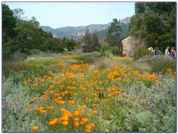 Santa Barbara Botanic Garden Map