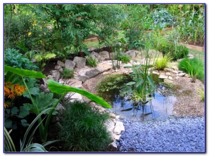 Suburban Lawn And Garden Overland Park Ks
