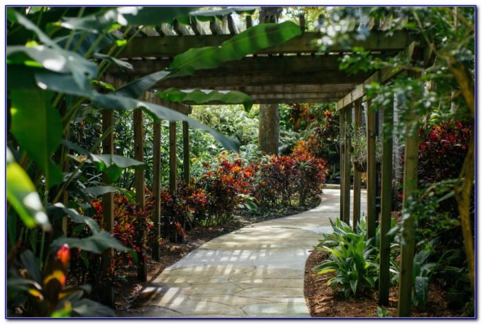 Sunken Gardens St Petersburg Florida Coupons