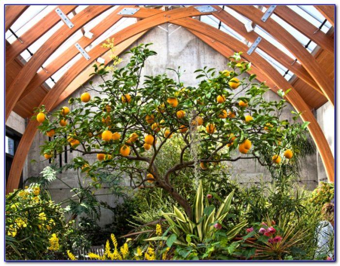 Tower Hill Botanical Garden Map