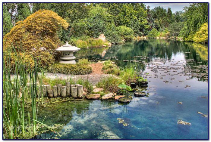 Botanical Gardens Richmond Va Christmas