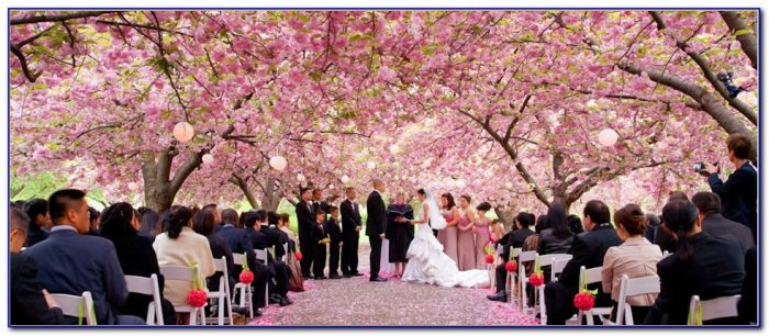 Brooklyn Botanical Garden Wedding Pictures