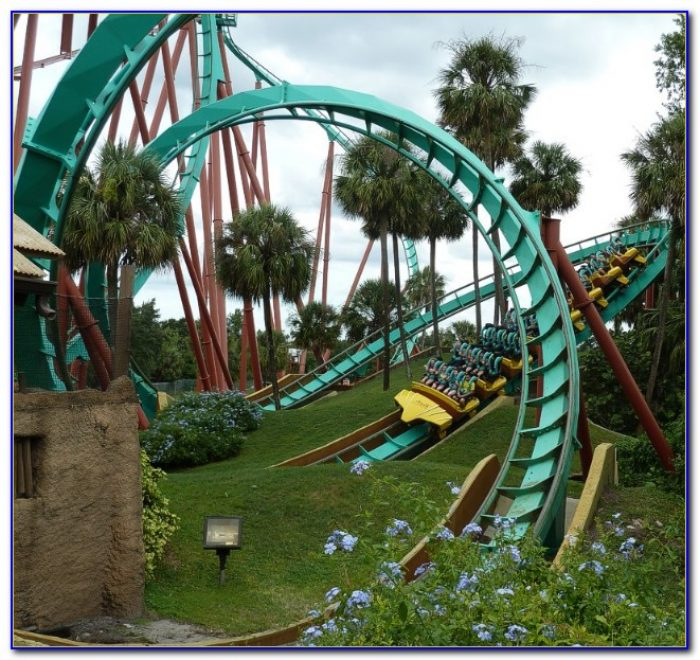Busch Gardens Tampa Lost And Found Phone Number