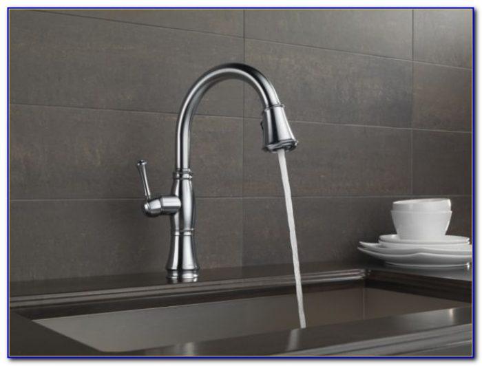 Delta Cassidy Kitchen Faucet 9197 Ar Dst