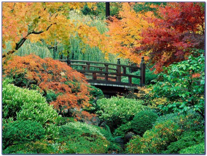 Japanese Garden Supplies Portland Oregon