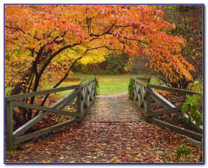 North Carolina Botanical Garden Classes