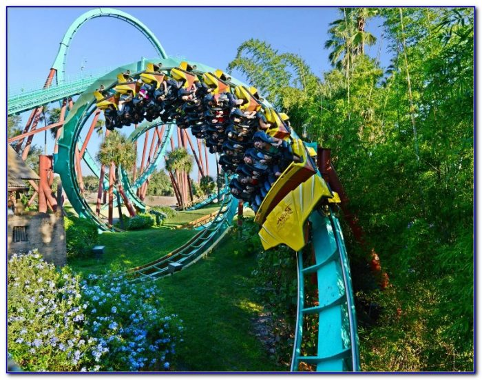 Rides At Busch Gardens Videos