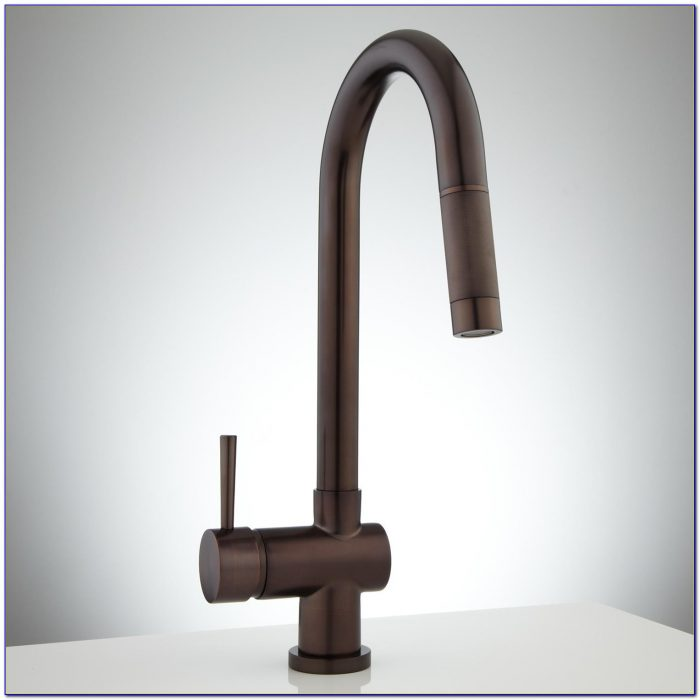 Single Hole Kitchen Faucet Brushed Nickel