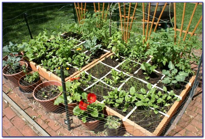 Square Foot Gardening Spacing Okra