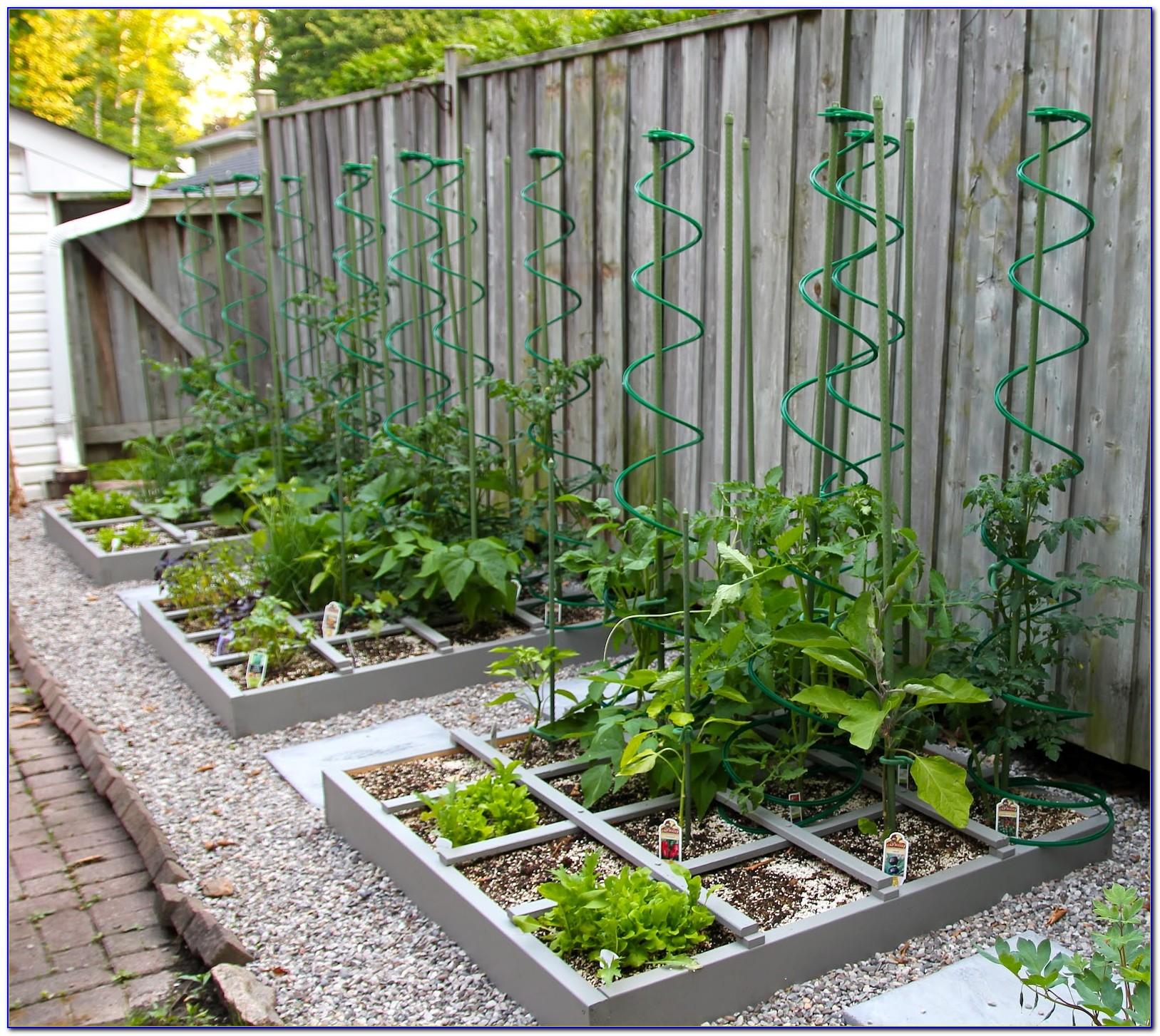 Square Foot Gardening Spacing Tomatoes