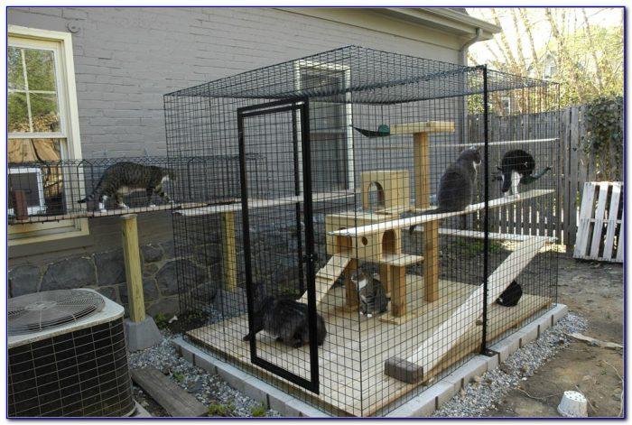 Cat Patio Enclosures