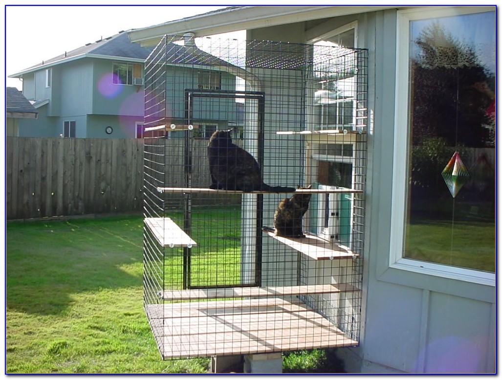 Outdoor Patio Cat Enclosures