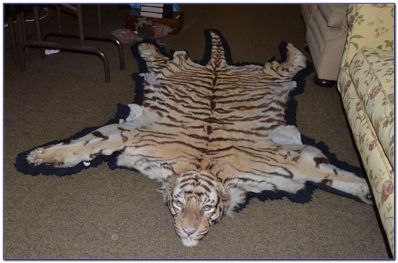 Tiger Skin Rug Real Rugs Home Design Ideas 8d1krwdkl9