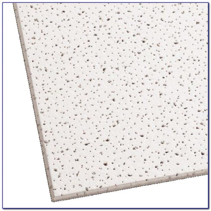 Armstrong Acoustical Ceiling Tile Maintenance