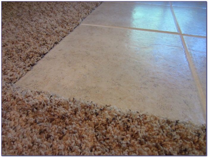 Ceramic Tile To Carpet Transition Strip