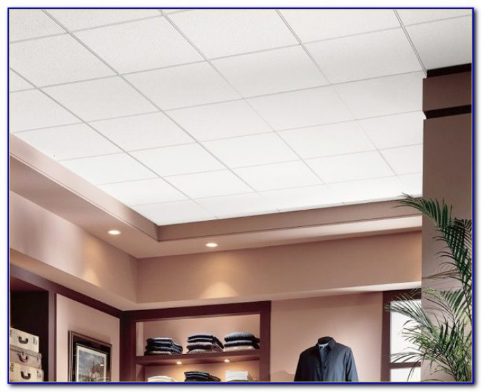 Commercial Kitchen Ceiling Tiles Armstrong