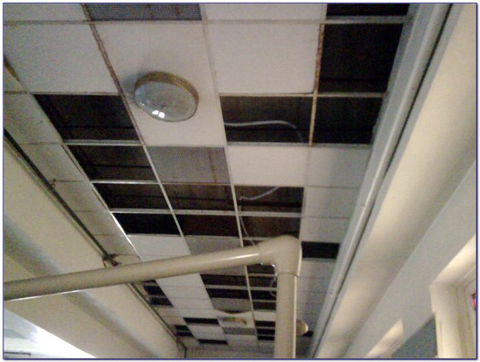 Drop Ceiling Tiles 2x4 White