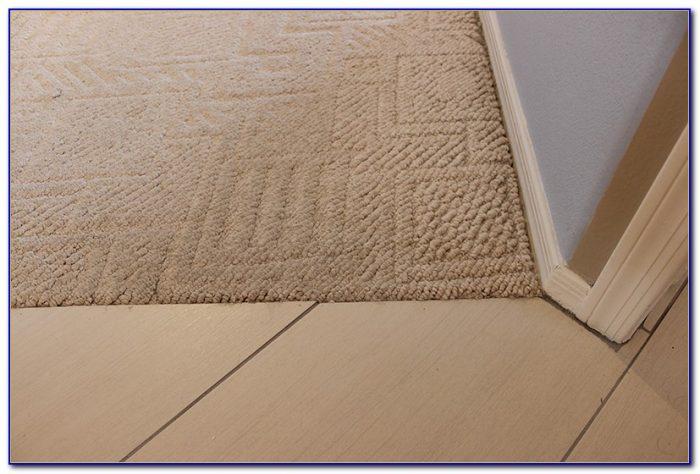 Transition Carpet To Tile Concrete Floor