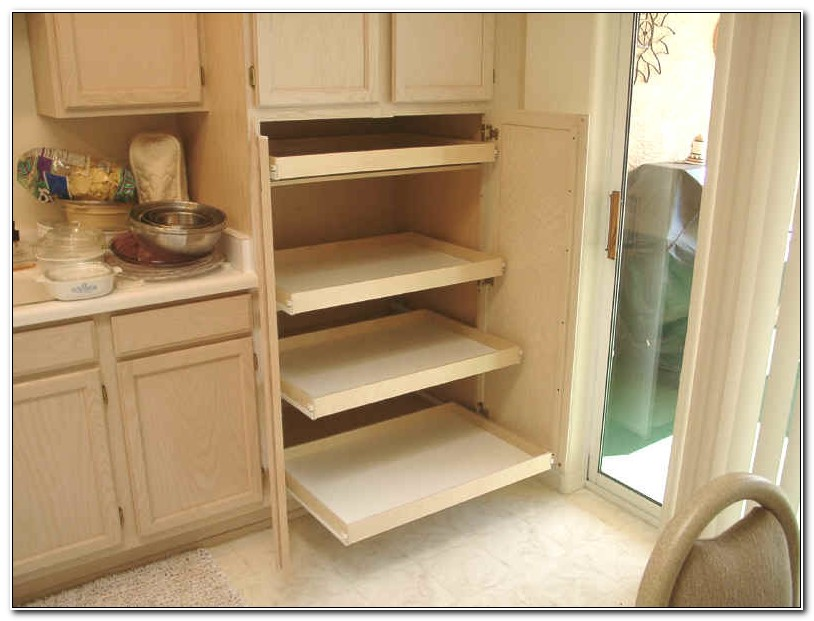 Cabinet Pull Out Tray