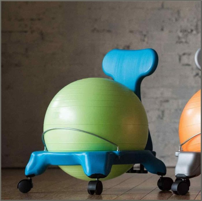 Swiss Ball Desk Chair