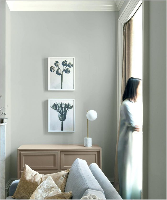 Best Dining Room Paint Colors 2019